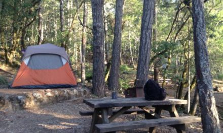 Why I lived in a car and tent to pay off my debt
