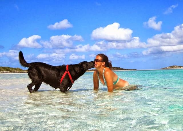 Molly plays with her boat dog Kala in beautiful turquoise waters. She has great dogs on boats tips.