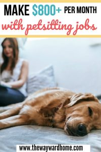 How to get pet sitting jobs and make over $1,000 per month