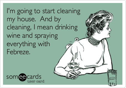 meme describing cleaning a house
