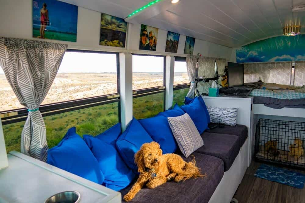 dog sits on the couch inside this skoolie conversion looking toward back of the school bus