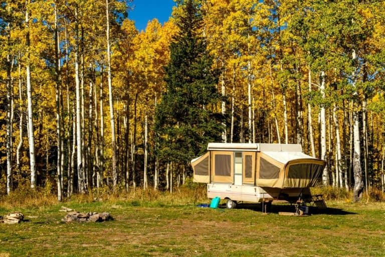 A Pop Up Camper parked near fall foliage