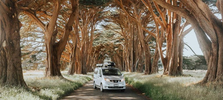Nissan NV200 camper parked under an arched grove of trees