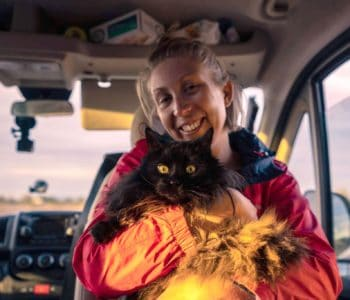 How van life breathed new life into my elderly cat