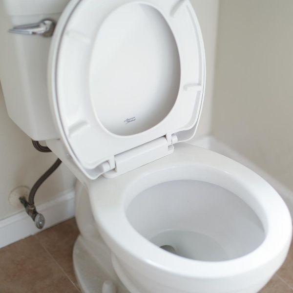 Tiny house toilet option 1: Conventional toilet