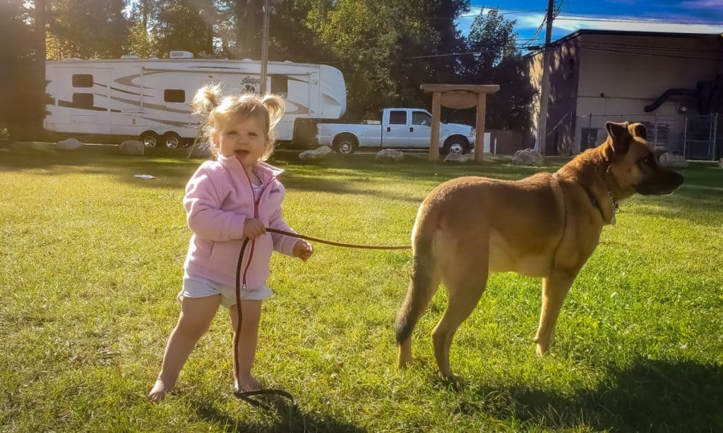 Glen's daughter and a dog standing in front of their RV - one reason he wanted to start a bookkeeping business