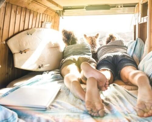 Couple lie on van mattress with dog