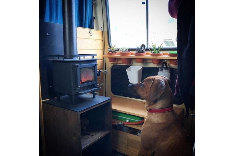Wood stove in a camper van with dog looking into it