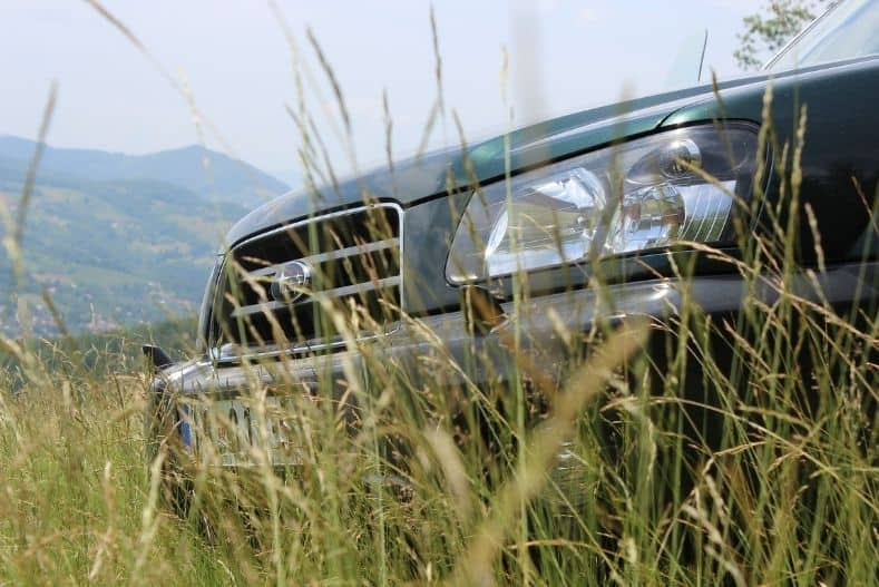 Front end of a Subaru Forester in a field